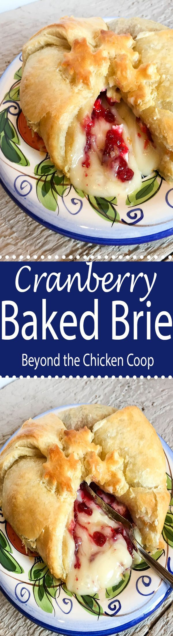 Cranberry Baked Brie Recipe - a delicious party appetizer!