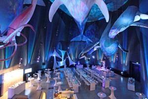 Veranstaltung in der Ausstellung 1:1 Riesen der Meere - © Johannes-Maria Schlorke