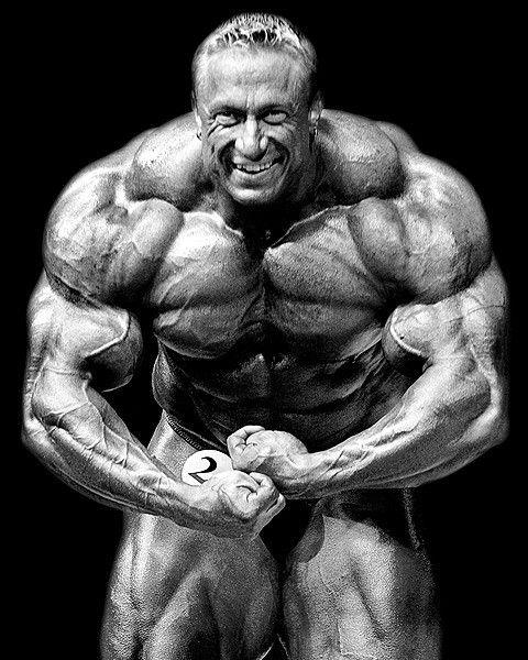 80 best Markus Rühl images on Pinterest   Bodybuilder
