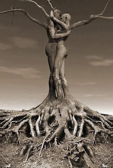WOW Black Love rooted!!!!