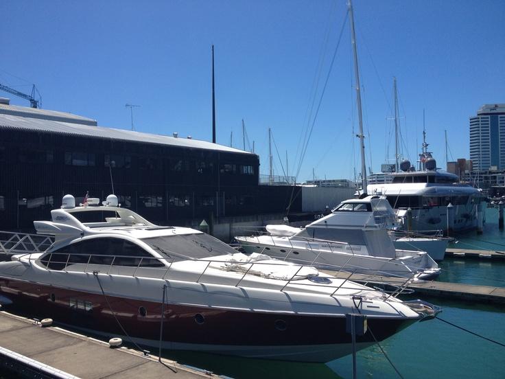 Auckland... city of sails