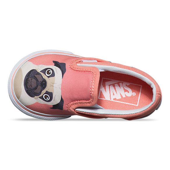 Pug Vans for Toddlers!
