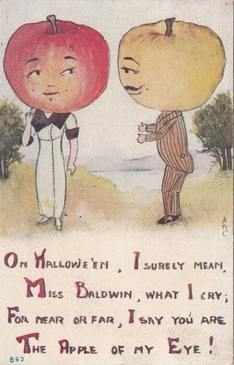 Vintage postcard. Baldwins were one of the most popular apple varieties in early 20th century North America.