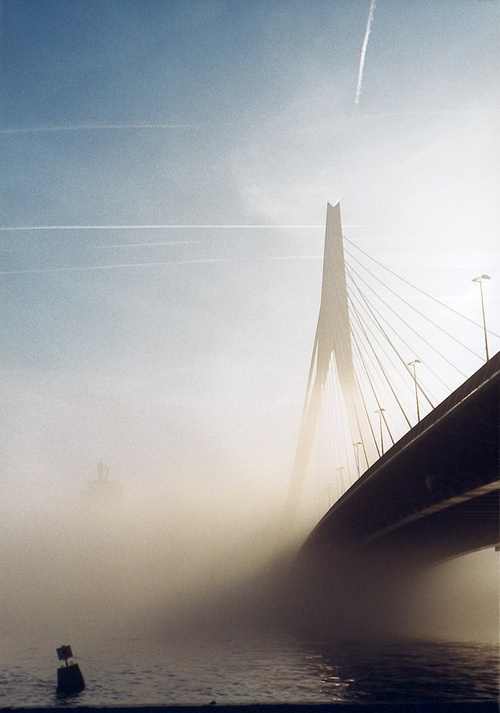 Erasmusbrug in the mist