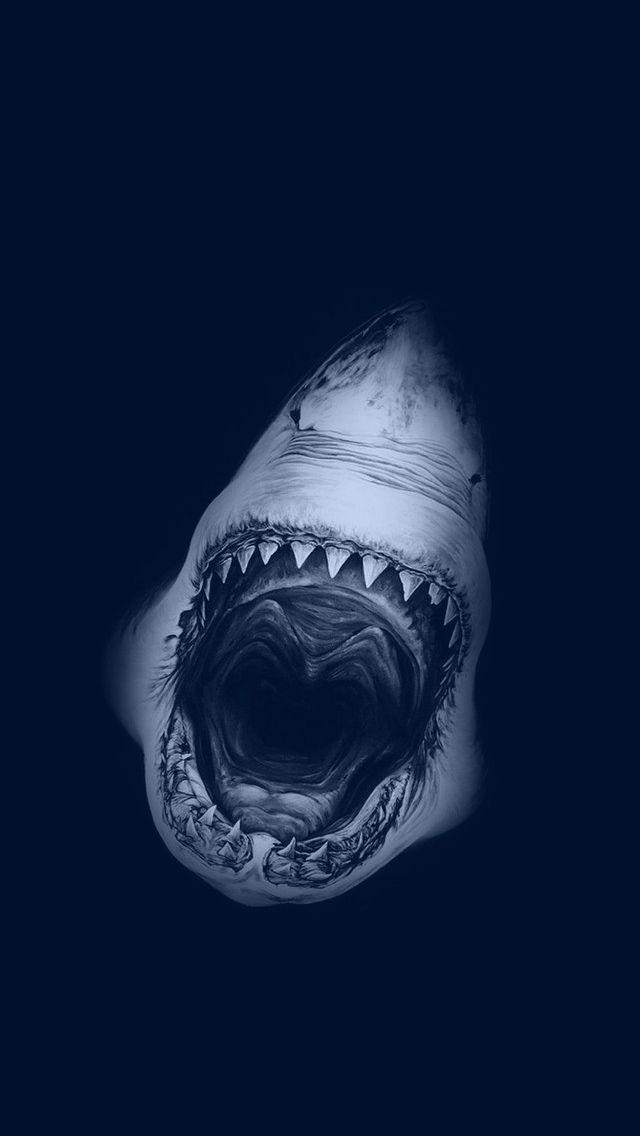 nice fond d'écran hd iphone swag-225 | Shark drawing, Shark, Robert longo