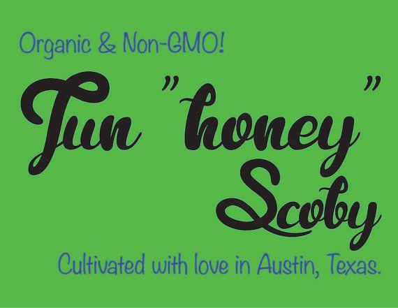 "Jun ""Honey"" Scoby - Live Probiotic Culture for Homebrew Jun Kombucha Tea (Fed Organic Non-GMO Green Tea & Raw, Unpasteurized Honey)"