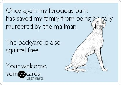 Haha...yep he hates the mailman!