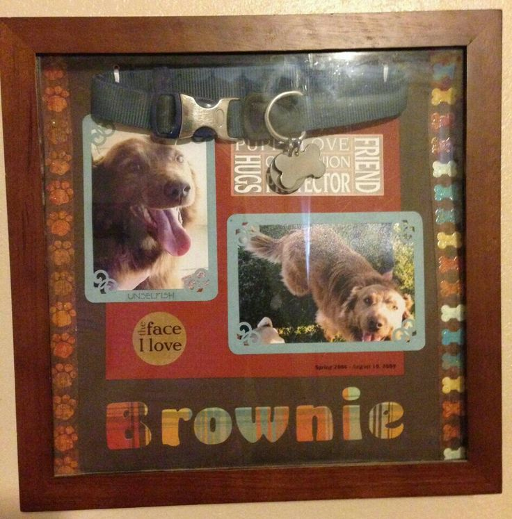 Pet memorial shadow box