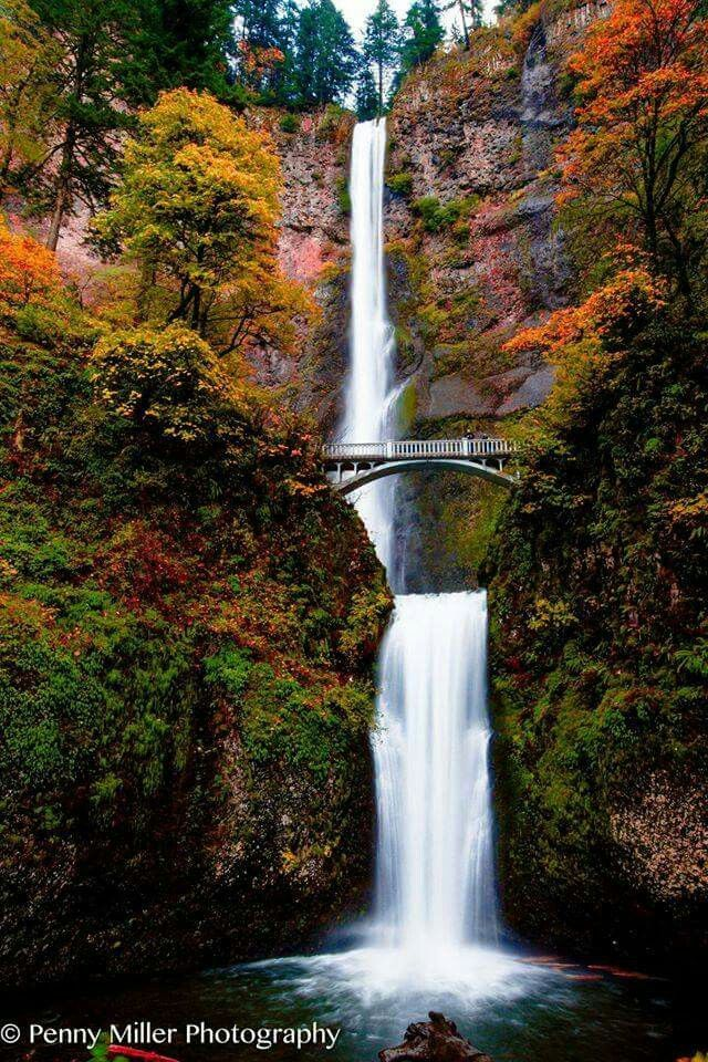 Portland Oregon Fall Had Wallpaper Multnomah Falls Near Portland Oregon Nature