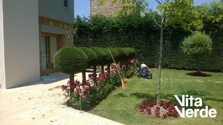 Maintenance day at Sani resort!   #vitaverde_gr #notyourodinaryspace #beautifulgardens