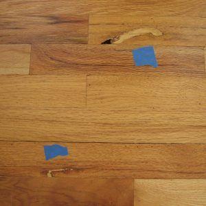 Best Wood Filler For Wood Floors