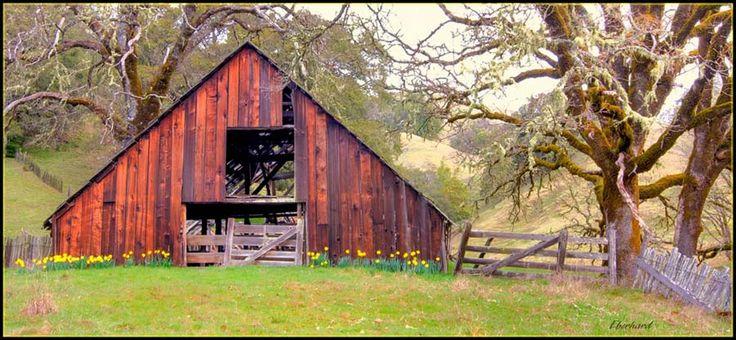 Vintage Barns Old Barn On Hwy 20 Near Willits