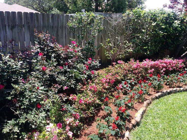 New Orleans Garden Design new orleans backyard garden Ponseti Landscaping Old Metairie Lakeview And Uptown New Orleans Garden Landscaping Design And Maintenance Uptown New Orleans Landscaping Pinterest
