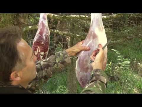 How to Butcher a Deer Down to the Bone ~ U tube