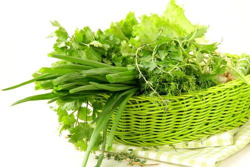 Ароматная зелень способствует похудению Зелень - лучшая находка для сыроедов и тех, кто хочет похудеть
