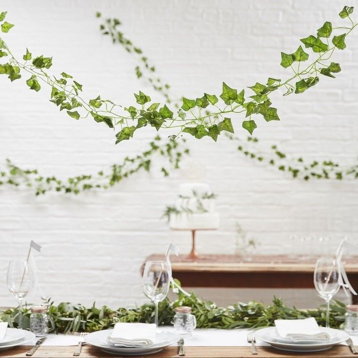 Use these beautiful natural set-up with these decorative Vines on your big day The green vines are the perfect addition to your wedding venue when