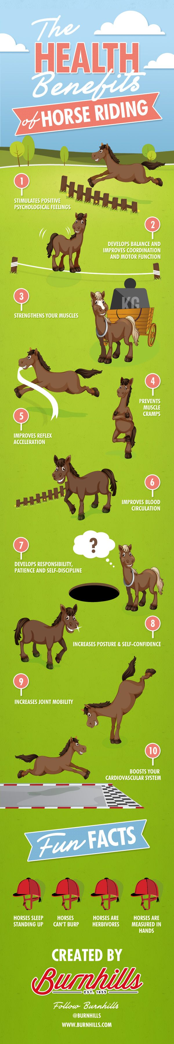 Horse riding is not only great fun, but it also has some fantastic health benefits which may have gone largely un-noticed. Here at Burnhills we have put together some of the sport's most important and stimulating health benefits. #infographics