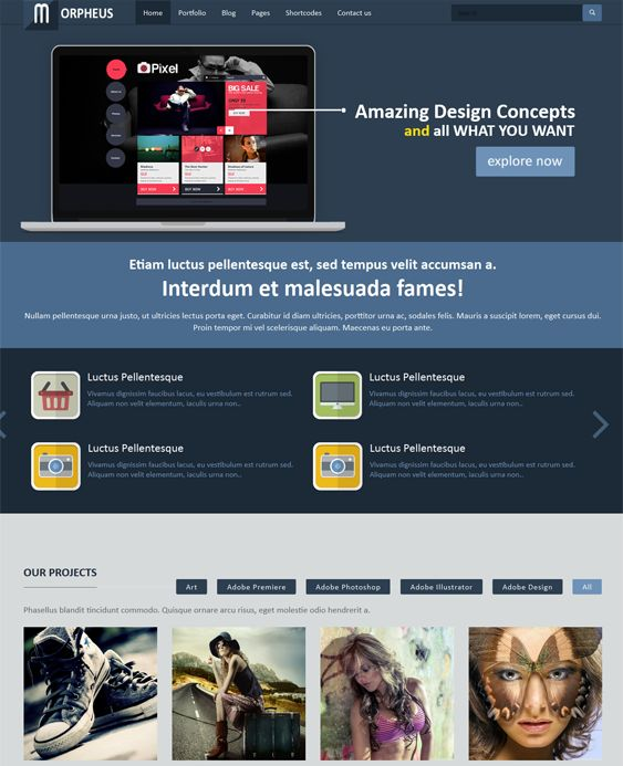 Morpheus is a flat, responsive one page WordPress template. It includes 10 color schemes, 5 header layouts, Revolution slider, portfolio pages, Bootstrap support, many shortcodes, and more.