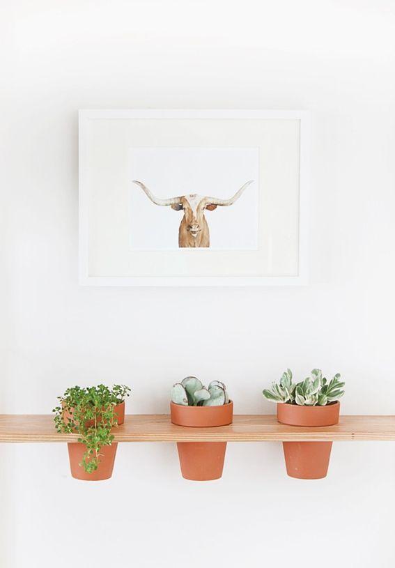 DIY Hanging Planter Shelf