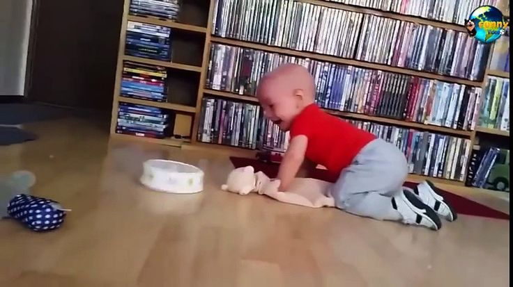 Kids Funny Video ★ Funny Videos Of Kids ★ Funny Videos For Kids ★ Funny Baby Laughing - http://trynotlaughs.us/kids-funny-video-%e2%98%85-funny-videos-of-kids-%e2%98%85-funny-videos-for-kids-%e2%98%85-funny-baby-laughing/