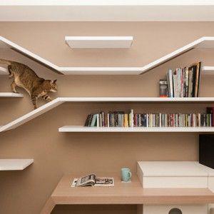 本棚としてだけではなく、猫アスレチックとしても機能するわけです。 台湾の建築デザイン事務所・思維空間設計(Thinking Design)の作品より。猫と共に暮らす一家のためにデザインした、猫も遊べる、壁面本棚。  身を屈めて、洞窟を探検するかの如き猫を、横から観察可能。何かに似ているなーと思ったら、あれです、アリの巣観察キットでした。 [一極-楊宅/思維空間設計 via hauspanther]