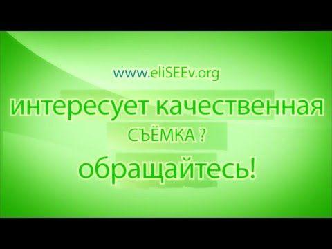 Заказ фото и видеосъемки eliseev.org -контакты фотографа и видеографа в ...