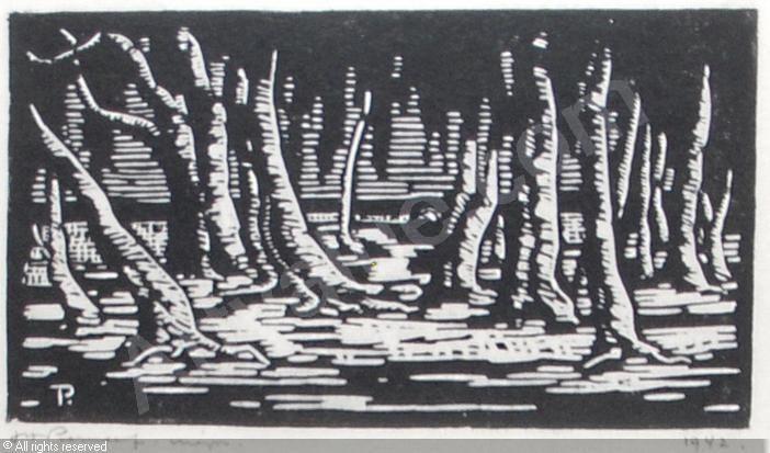 Jacob Hendrik Pierneef, Wilgeboomstamme