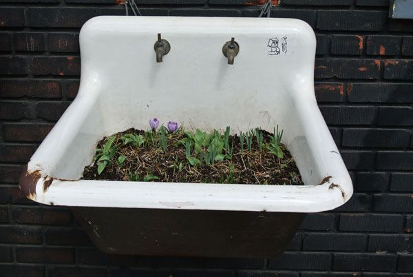 sassandbide - newyork la 1Gardens Sinks, Gardens Ideas, Basin Bloom, Creative Gardens, Broken Sinks, Gardens Planters, Outdoor Gardens, Sinks Gardens, Gardens Growing