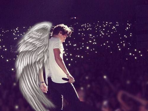Harry Style Angel