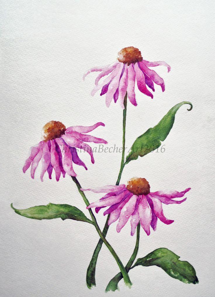 purple coneflower watercolor painting   Christina Becher ...