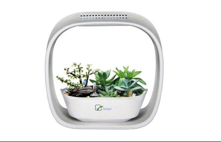 Led Light Garden Grow Indoor Plants Herbs Kids Learning Planter Plant Flower Pot #Spigo