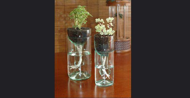 Manualidades con botellas de vidrio de coca cola imagui for Manualidades con botellas de vidrio