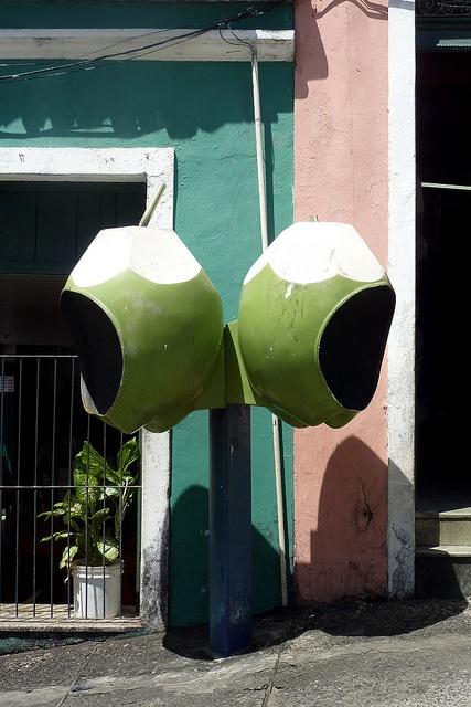Coconut phones, Salvador de Bahia, Brazil