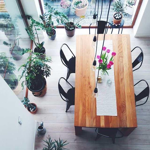 Spokój w jadalni :) #homesweethome #jadalnia #home #skrawkidnia #florencebeauty #homedecor #listopad #jesień #flowers #zamiokulkas