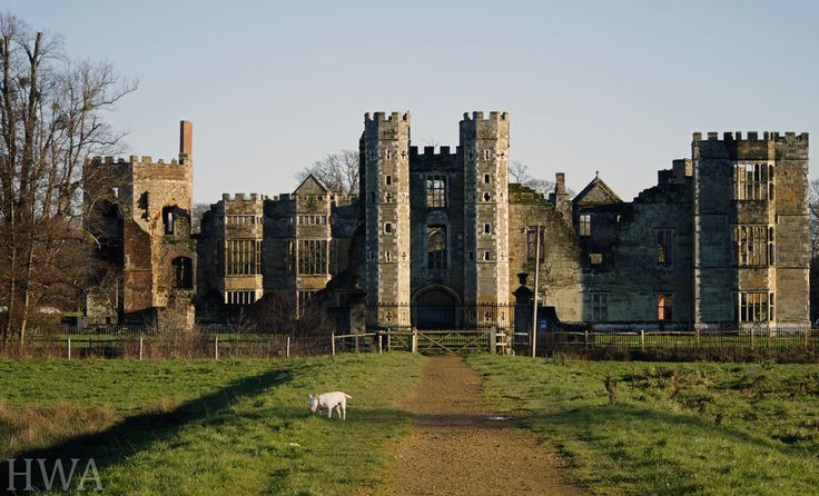 ~ Captivated by Cowdray ~ Photo by @henryascoli  #locallife #behindthelens #Cowdray #Midhurst #Sussex #tudor #history
