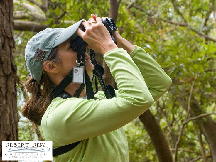 If you enjoy birding then you would enjoy your stay with us. On our beautiful farm there are more than 80 different bird species. Link: http://ow.ly/kuGE309BL4y