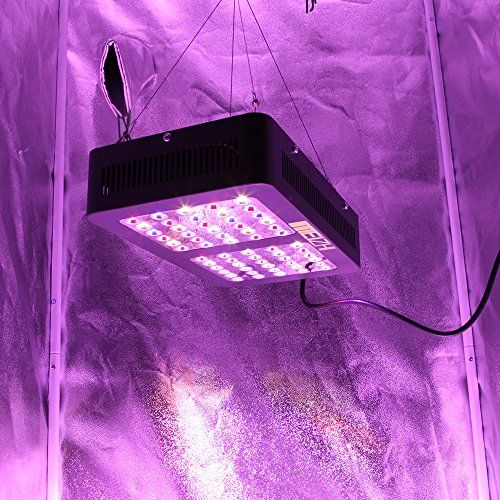 Special Offers - MEIZHI Reflector-Series 300W LED Grow Light Full Spectrum  Growing Lamp Panel for Hydroponics Indoor Greenhouse Plants Veg Flowering Growth Review - In stock & Free Shipping. You can save more money! Check It (February 18 2017 at 11:01AM) >> https://growinglightfixtures.com/meizhi-reflector-series-300w-led-grow-light-full-spectrum-growing-lamp-panel-for-hydroponics-indoor-greenhouse-plants-veg-flowering-growth-review/