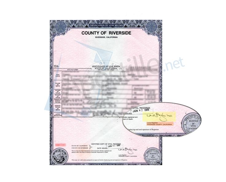 San Francisco Marriage Certificate State of California Sample - copy alameda county records birth certificate