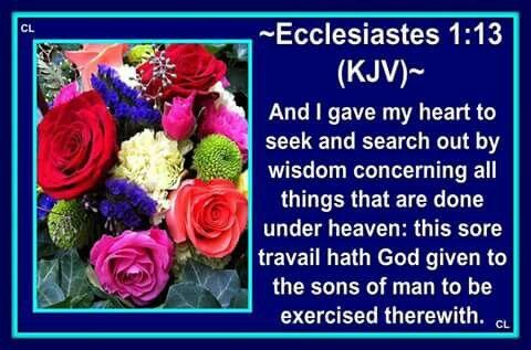Ecclesiastes 1:13 KJV