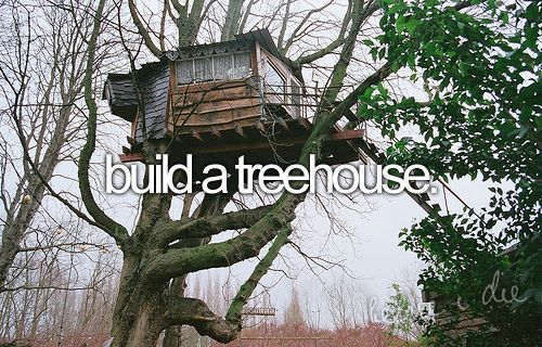 build a treehouse.