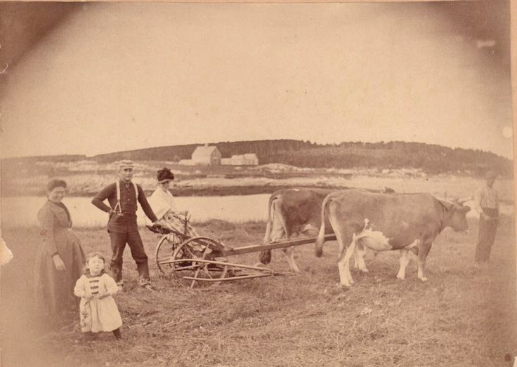 2443 best images about rural life past present on for Ranch and rural living