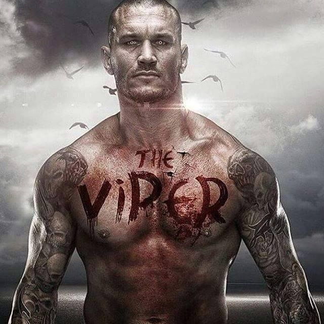 29 Best The Viper Randy Orton Images On Pinterest