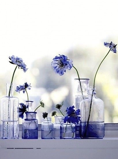 (via Colors / blue, by photographer Debi Treloar)