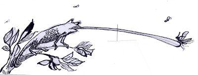 LUIS DESENHA:  E se o camaleão pousasse numa caneca?