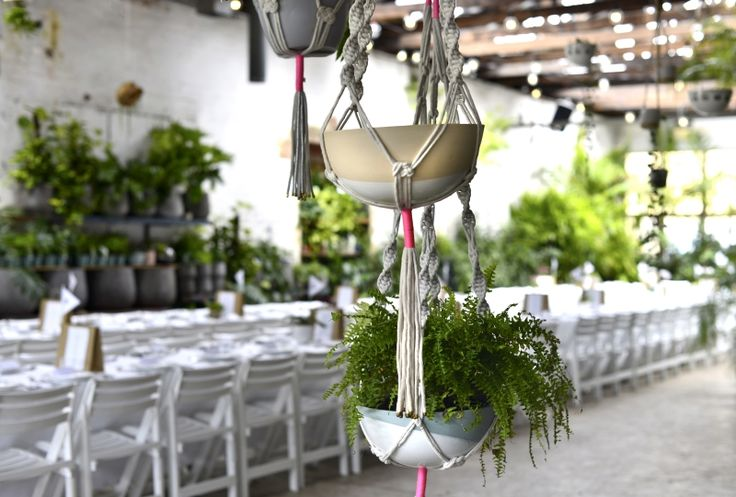 Glasshaus Nursery in Richmond is one of the most unique spaces we've come  across. Set in a beautiful old 1920s warehouse, every wall is draped with  plants and greenery so that it feels as if you're in an indoor garden.  With room to seat up to 80 or 95 for cocktail parties its such an exciting  space for weddings, events and celebrations.