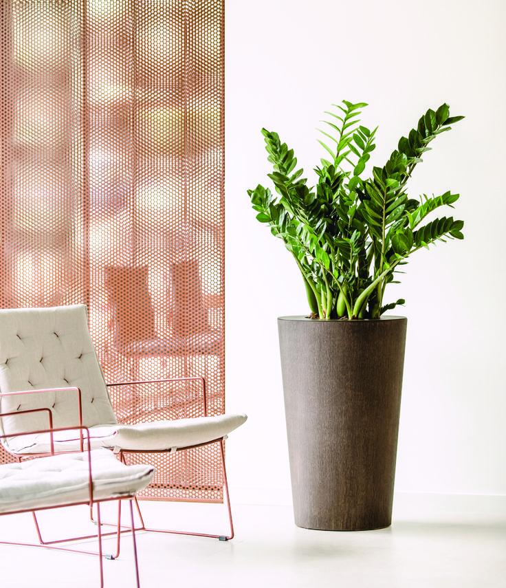 ARC by Hobby Flower Finishes: Dark Oak, Soft Oak, Bamboo #pots #planters #hydroplanters #green #hobbyflower #container www.hobbyflower.com