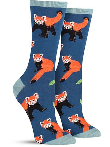 Don't let the name fool you… these awesome animals are much closer to raccoons and skunks than they are to traditional pandas. Measuring just about two feet in length, the little red panda is weighs j