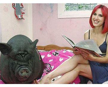 Wanita Cantik Tidur dengan Babi Hitam Raksasa | wisbenbae