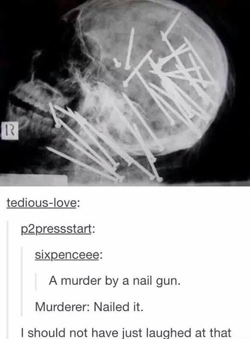 funny tumblr pun nailed it