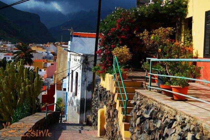 Tarasowo położone dzielnice w San Sebastian  pełne kolorowych domków z niezliczonymi doniczkami na tararasach #LaGomera